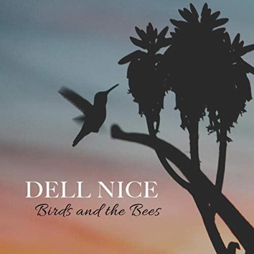 Dell Nice