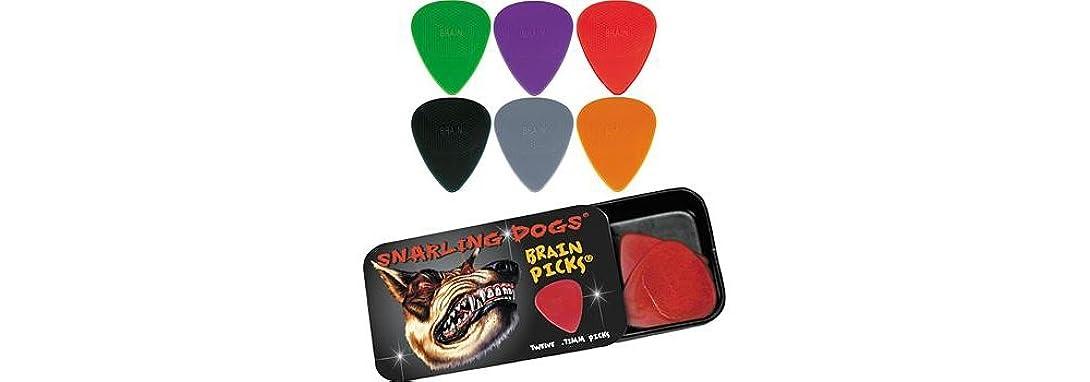 哲学的動機付ける時刻表D'Andrea/ダンドレア Snarling Dogs BRAIN PICKS ピックケース付 ナイロン ギターピック12枚セット /TNSDB351 1.14 (Orange)