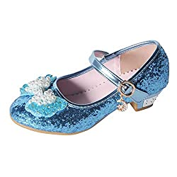 A-blue Mary Jane Low Heels Shoes