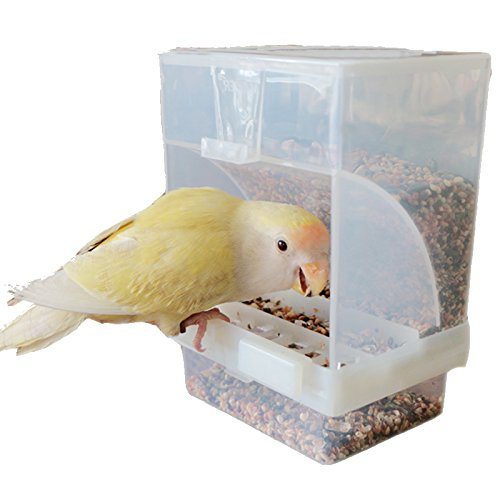 automatic bird seed dispenser - 3