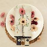 YZMBYUSAN Umbrella Automati Begonia Handbemalter Blumenschirm Sonnenschutz Sonnenschirm Femaleflower Rattanschirm -