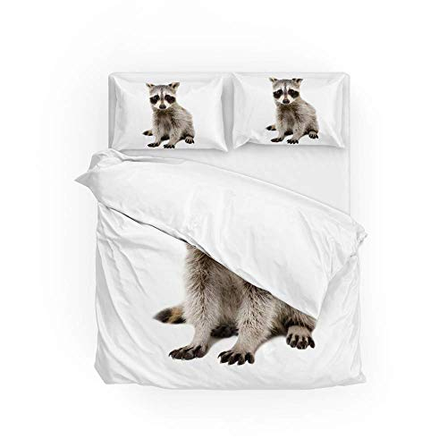 Soft Quilt Bedding Set Cute Raccoon Duvet Cover with Pillowcases 2 Pieces Set 135 x 200 CM,Single Size