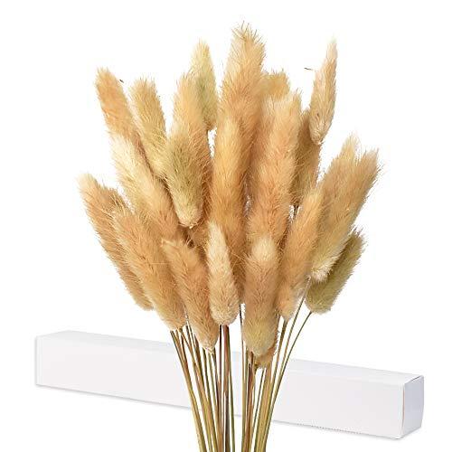 Getrocknete Pampasgras Deko, 35X Pampasgras Getrocknet, Kein Geruch Trockenblumen, Trockenblumenstrauß, Natürliche Getrocknete Blumendekoration(Braun)