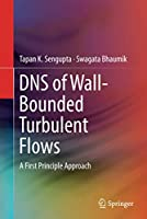 DNS of Wall-Bounded Turbulent Flows: A First Principle Approach