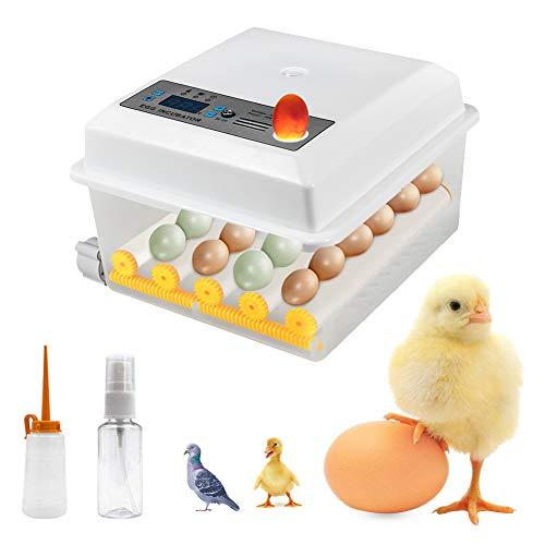 Inkubator Digital Ei-Inkubator 16/24 Eier Automatischer Brutautomat für den Heimgebrauch, LED Eier Inkubator Vollautomatisch,LED Temperaturregelung Automatisches Drehen für Mehrere Eigrößen