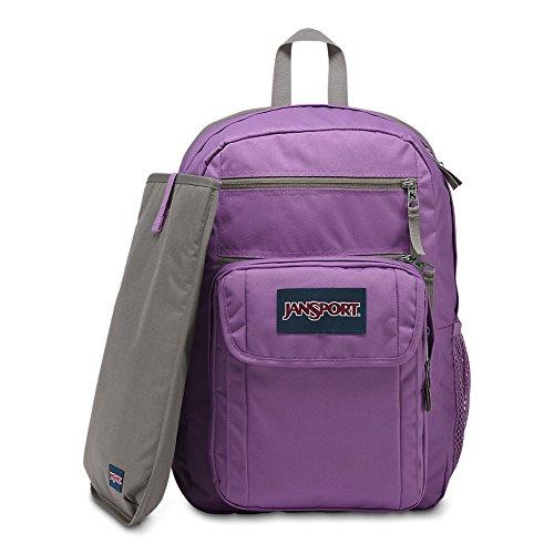 JanSport Digital Student Laptop Backpack - Vivid Lilac