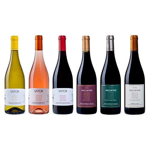 Box Misto Vini Toscana - Bianco Rosato e Rosso - Sator - 6 Bottiglie 0,75 L - Idea Regalo