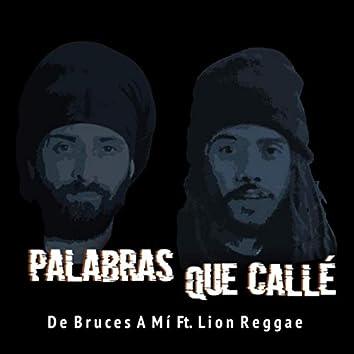 Palabras Que Callé (feat. Lion Reggae)