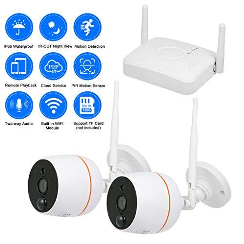 1080P HD Draadloze Audio Video NVR Home Surveillance Systeem met 2 Outdoor Draadloze Beveiliging Camera Set, IR-CUT Dubbele Filter, PIR Alarm,1 * 1080P,EU