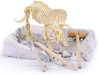 ShellKingdom Big Real Dinosaur Fossil for Digging in Sand, Dig it! Excavate A Triceratops, Paleo Expedition Dino Figures for Kid Gift Party Decor (Triceratops)