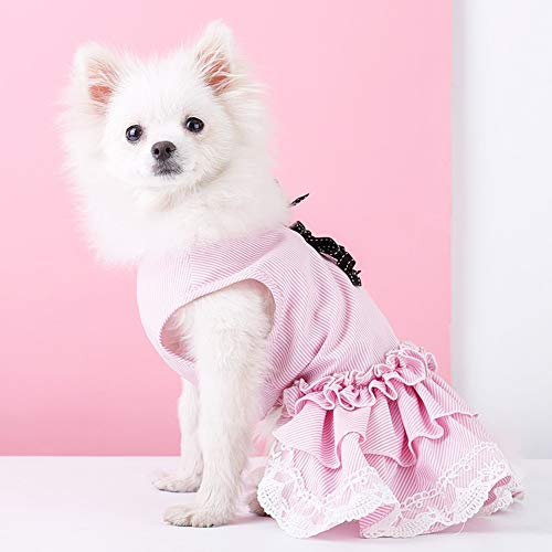 XPC-huisdierkleding huisdier-hondenwelpen-kleine hond katoenrok kostuum huisdier hond kat shirt gebreide jas puppy T-shirt mantel kleding hond kat kleding hond mooi meisje