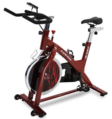 Bladez Fusion GS II Stationary Indoor Cardio...