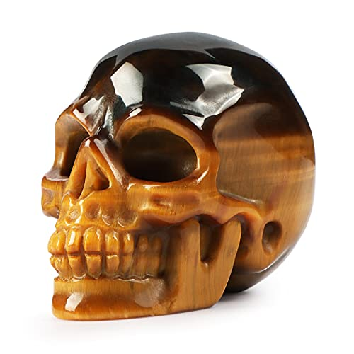 Artistone 2''Healing Halloween Skull Decor Statue Quartz Crystal Skull Figurines Sculpture Carved Tiger Eye Gemstone Human Skull Head Crystals and Stones for Closet,Fireplace Decoration