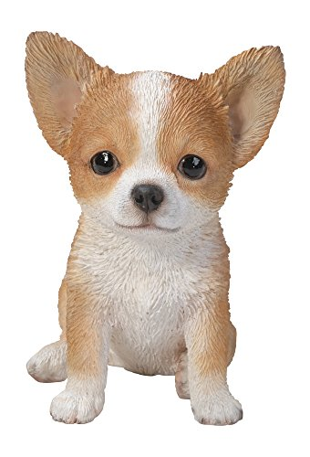 Hi-Line Gift Ltd Chihuahua Puppy Statue, Brown/White