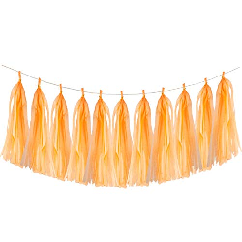 Aimto 20pcs Orange Shiny Tassel Garland Banner Tissue Paper Tassels for Party Decorations
