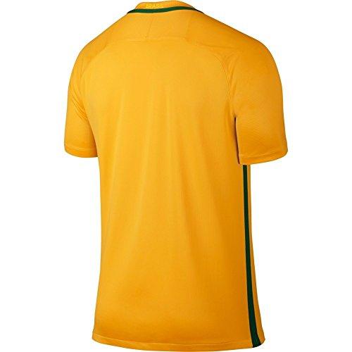 Nike 2016-17 Brazil Home Football Soccer T-Shirt Maglia (Ronaldinho 10)