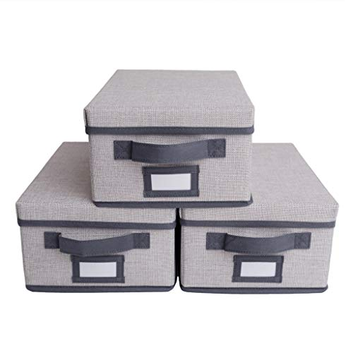 Foldable Storage Boxes with Lids | Shoebox Size Organizer Bins for Shelf Home...