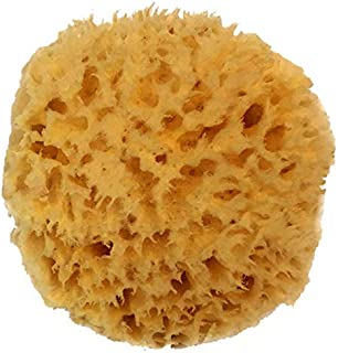 all natural sea sponge