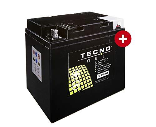 GEL-Motorrad-Batterie TECNO-GEL 53030 für MOTO GUZZI California 1000 II, III, 1100 ie div, EV 1982-2011, 12V Gel-Batterie 30Ah, 187x130x170 mm inkl. Pfand
