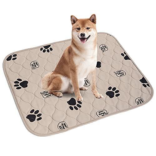 EZwhelp (Confezione da 2 imbottiture riutilizzabili per cani, assorbenti veloci, assorbenti e impermeabili, per addestramento dei cuccioli, 36x48, Stivaletti da pioggia zebrati - Bambini