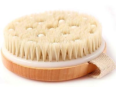 Stephanie Franck Beauty Dry