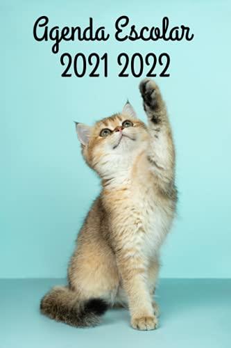 Agenda Escolar 2021-2022: Gato Diario Para Estudiantes - Con Calendario, Horario, Fecha Para Recordar y Más