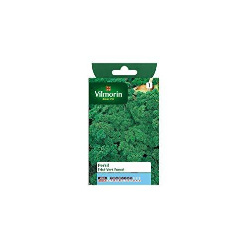 Vilmorin - Sachet graines Persil frisé vert foncé