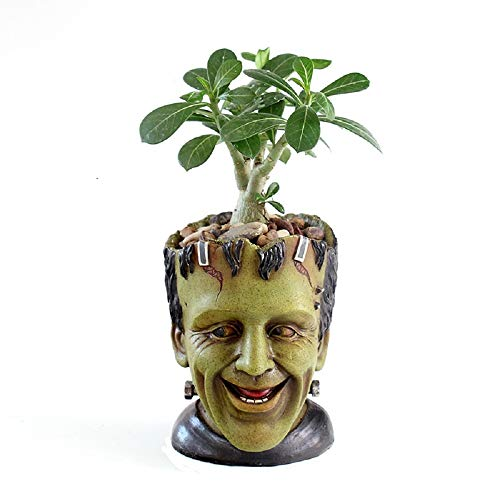 Youfui Funny Planter Indoor Plant Pots Resin Pen Holder with Drainage Hole Large Opening for 5.5...