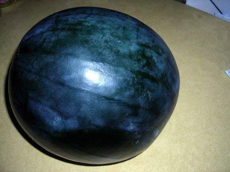 40 Heirloom Black Diamond Watermelon Seeds by Stonysoil Seed Comany