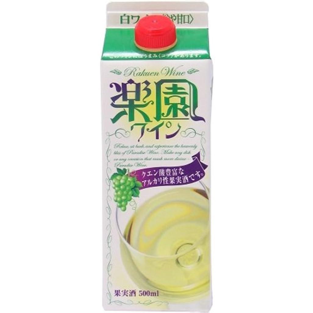 アジア人座標昇進楽園ワイン 白 [ 白ワイン 中辛口 日本 500ml ]