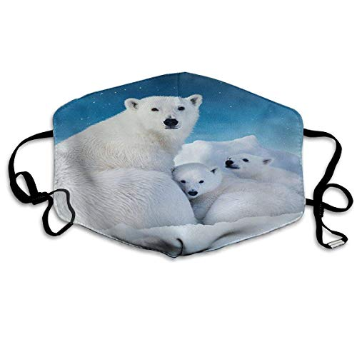 Anti Dusk Mask Cute Polar Bear Family Blue Sky Resualble Mouth Mask Balaclavas For Men Women