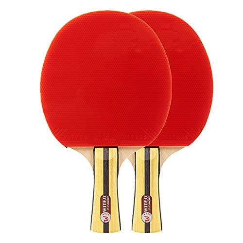 LINGOSHUN Juego de Raquetas de Ping Pong PortáTil para Principiantes Y Aficionados,Aprobado por la ITTF,Paleta de Ping Pong Deportiva / 2 Player Set/Long handle