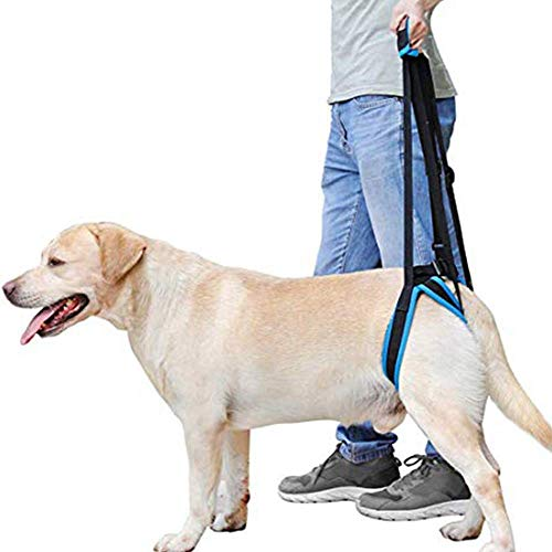 DogLemi Dog Lift Harness Portable Lifting Sling Support Strap Help Dogs with Weak Rear Legs Back for Small Large Dogs Surgery Recovery Walking Pain Relief