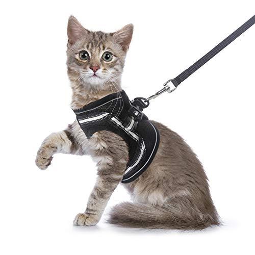 rabbitgoo Katzengeschirr mit Leine Ausbruchsicher Katzenleine verstellbar weich Welpengeschirr mit Reflektierender Streifen für Kitten und Welpen Schwarz S