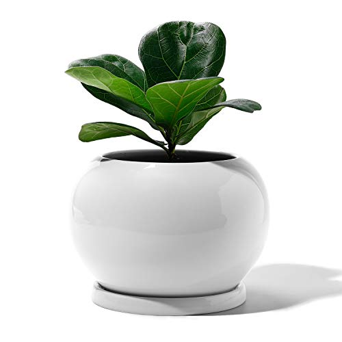 POTEY Planter Ceramic Plant Flower Pot - 5 Large Indoor Glazed Container Bonsai with Drainage Hole Saucer - Large Space - Golbe, Pure White