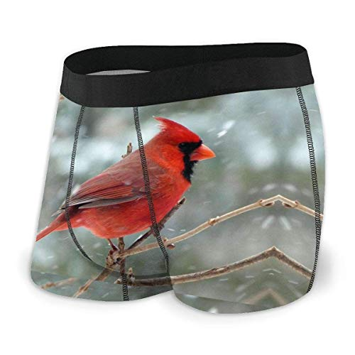 XCNGG Calzoncillo Tipo bóxer para Hombre Red Bird Fly Front con Bolsa Interior