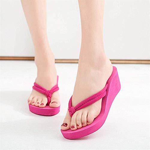 ZSW Shoes Chanclas de Mujer Zapatillas de Verano sólidas Zapatillas de cuña de Playa Zapatillas de Plataforma Informales Chanclas de Mujer (Color: Negro Talla de Zapato: 43)-39_Rojo Rosado