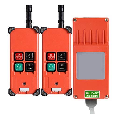 Newtry - Mando a distancia inalámbrico de canal industrial para transmisor de grúa, Two Transmitters + 24V Receiver, 1