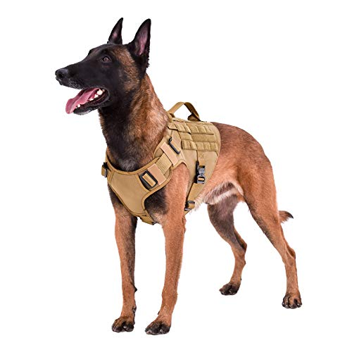 ICEFANG GN1 Tactical Dog Harness with 5 Point Adjustable ,Full Metal Clip,2X Handle,Walking Training Dog MOLLE Vest ,Hook and Loop Panels (L (Neck:18