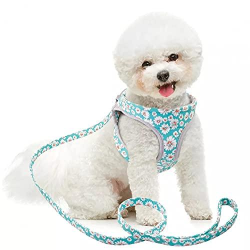 MDKAZ Arnés para Perros Arnés para Perros arnés Malla Suave para Mascotas Conjunto Correas para Cachorros Moda Impresa pequeños y medianos Chaleco para Perros arneses Bulldog francés-M,Medium
