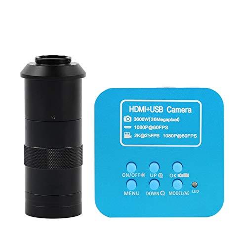 WEI-LUONG Upgrade 36MP FHD 2K 1080P 60FPS HDMI USB Digital Industrie C Mount Video Mikroskop Kamera für Telefon CPU PCB Lötwerkzeuge (Farbe: mit 100x)