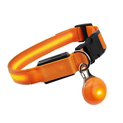 SNUNGPHIR LED Hundehalsband Wasserdichtes Leuchtendes Hunde Halsband Aufladbar Hundehalsband mit einstellbare Länge LED Leuchthalsband mit 3 Beleuchtungsmodi für Kleiner groß Hunde und Katzen-M