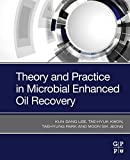 Theory and Practice in Microbial Enhanced Oil Recovery (English Edition)
