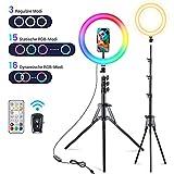 Virfine Aro de Luz para Movil TIK Tok, Vic TechCA 10' Anillo de luz LED con 31...
