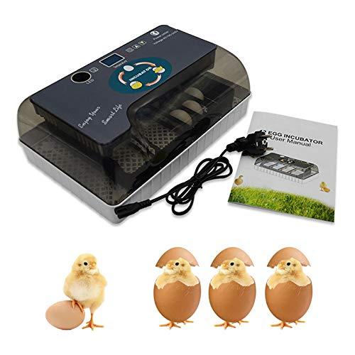 自動孵卵器 インキュベーター 鳥類専用ふ卵器 自動転卵式 孵化器 12個入卵 ヒヨコ生まれ 子供教育用 大容量 自動温度制御 湿度保持 デジタル表示 子供教育用 小型 鶏など家畜 鳥類専用 ふ卵器
