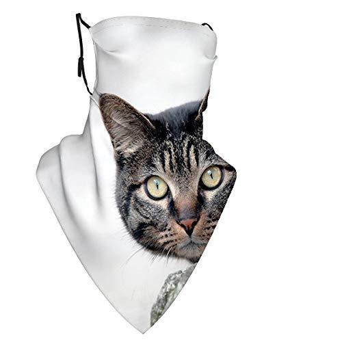 Ojos de hocico de gato x Bufanda de polaina para el cuello Protector solar Bandana transpirable para verano Calor Ciclismo Senderismo Pesca