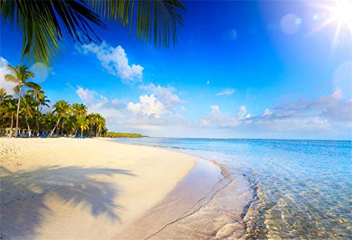 Cassisy 3x2m Vinilo Mar Telon de Fondo Vacaciones Playa de Arena Tropical Sunny Sky Árboles De Palmas De Coco Fondos para Fotografia Party Photo Studio Props Photo Booth