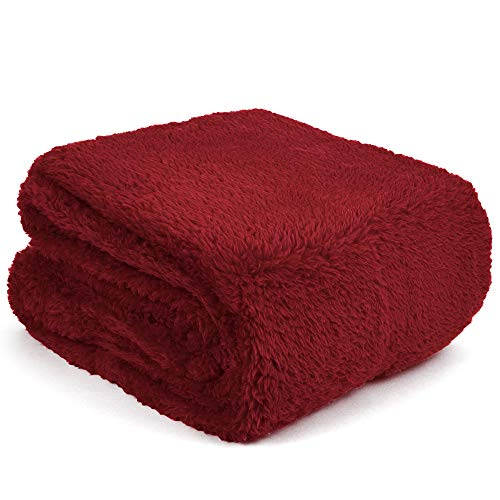 PAVILIA Fluffy Sherpa Throw Blanket for Couch Sofa | Plush Shaggy Fleece Blanket | Soft, Fuzzy, Cozy, Warm Microfiber Throw Solid Blanket, Burgundy Red Maroon, 60x80, Twin Bed