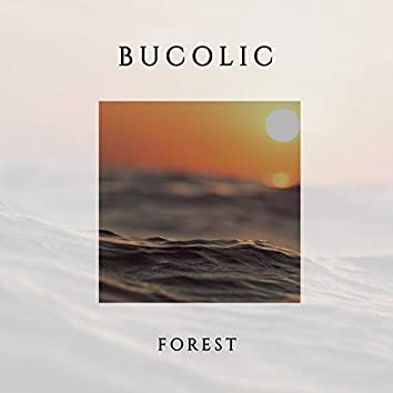 Bucolic Forest, Vol. 2