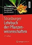 Strasburger - Lehrbuch der Pflanzenwissenschaften - Joachim W. Kadereit